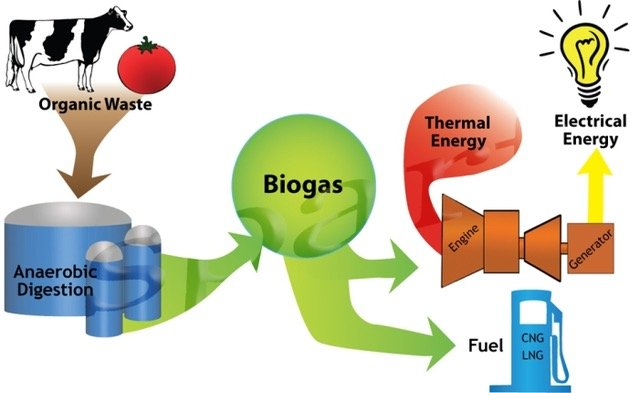 Biogas: A safe, sustainable and economical solution to